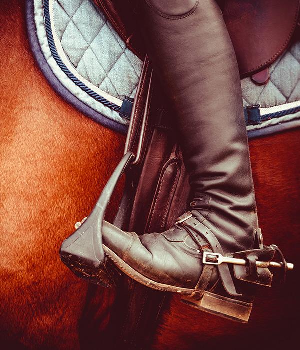 bottes d equitation bio